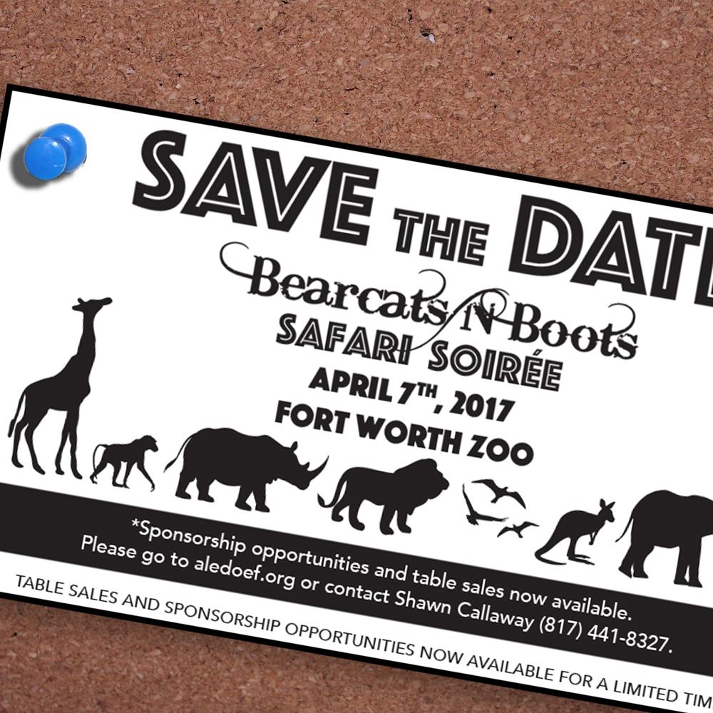 AEF Safari Soirée 2017